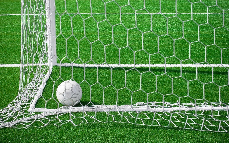 Сетка для мини футбола Msp5 шестигранная купить