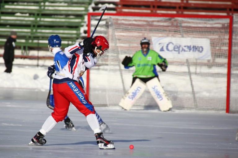 сетка для хоккея с мячом купить